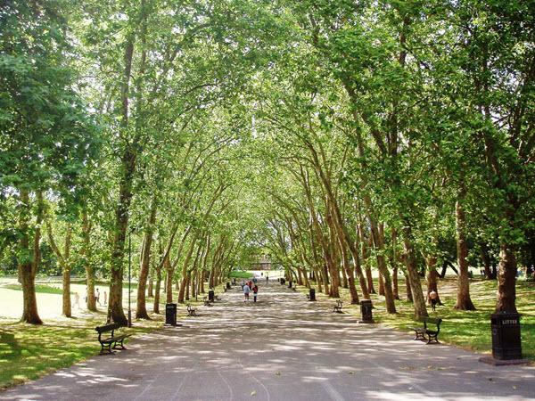 parc en été à Londres