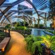 Découvrez les jardins insolites de Londres